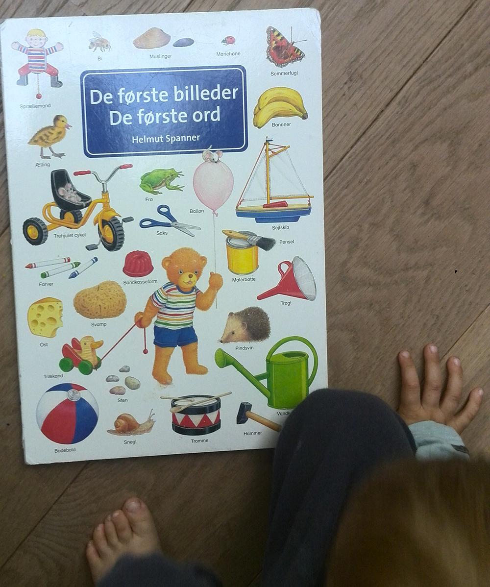 Min første ordbog